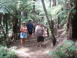 Kawau Island has lots of terrific hiking trails