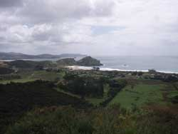 East coast of Great Barrier Island
